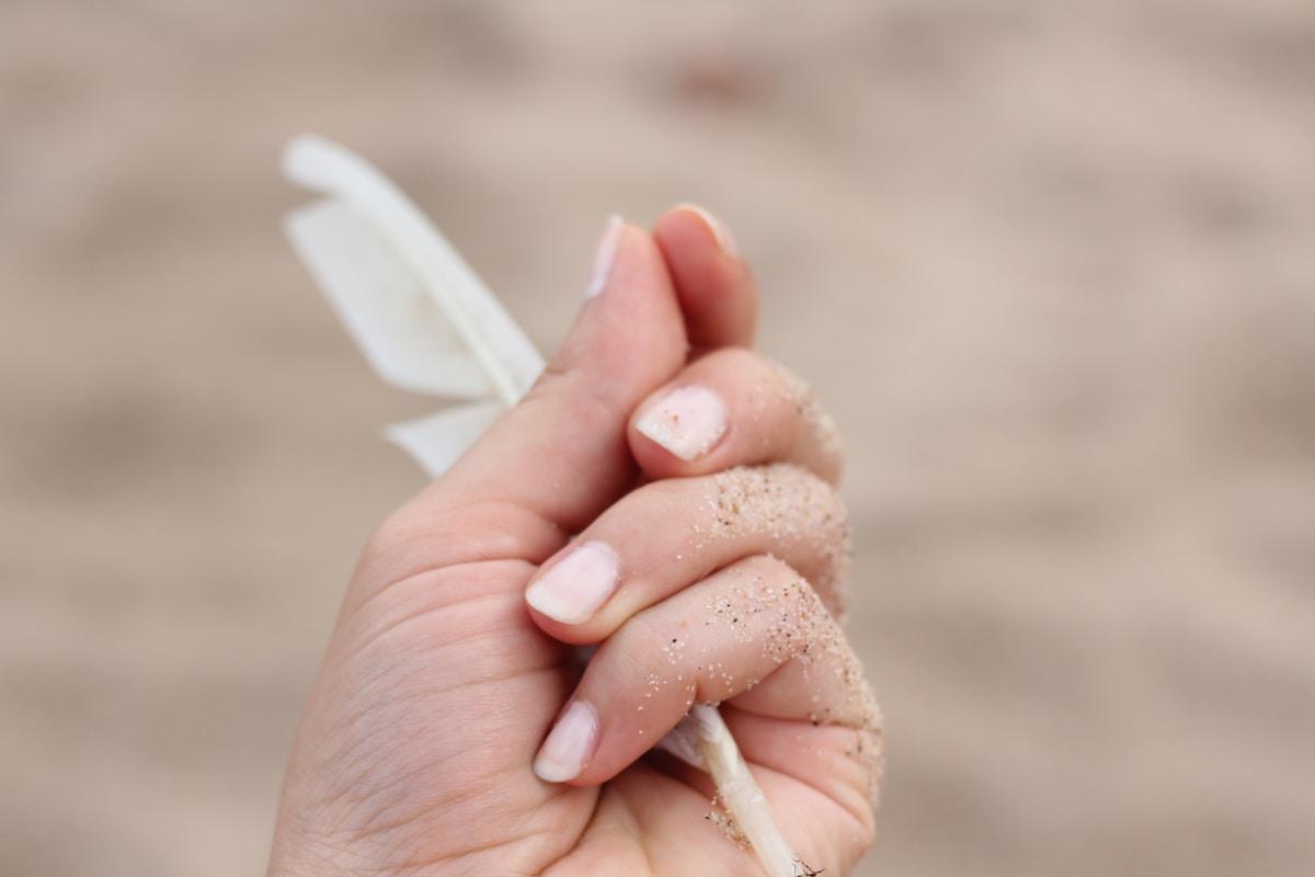 imparare a lasciar andare: foto di una piuma